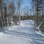 Temiskaming Nordic - Ski Northern Ontario - Red Trail