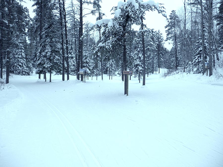 Temiskaming Nordic - Ski Northern Ontario - Playground